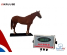 Kruuse EQUIVET 1000 Equine Scale