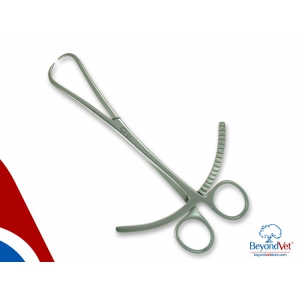 """Pointed reduction forceps 8""""/20cm"""