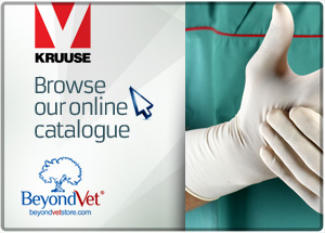 Browse our online KRUUSE catalogue